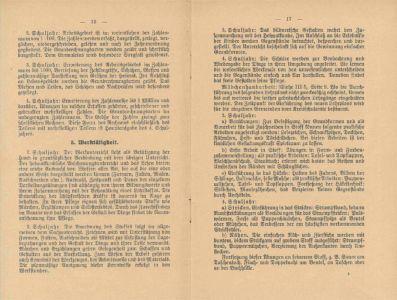 Lehrpläne 1924 S. 10