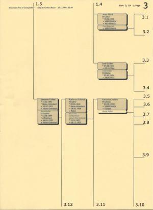 Stammbaum Gräber 3