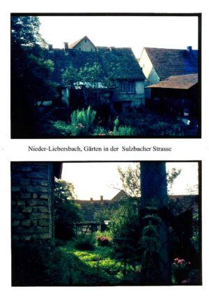 Sulzbacher Strasse / / Gärten in der Sulzbacher Straße